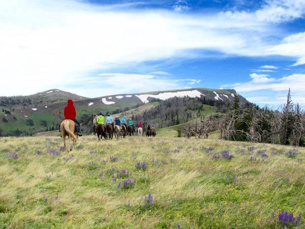 Riding Horses in SW Montana at Summer Camp