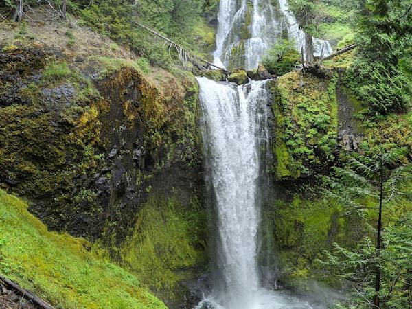 Hike to Waterfalls in WA